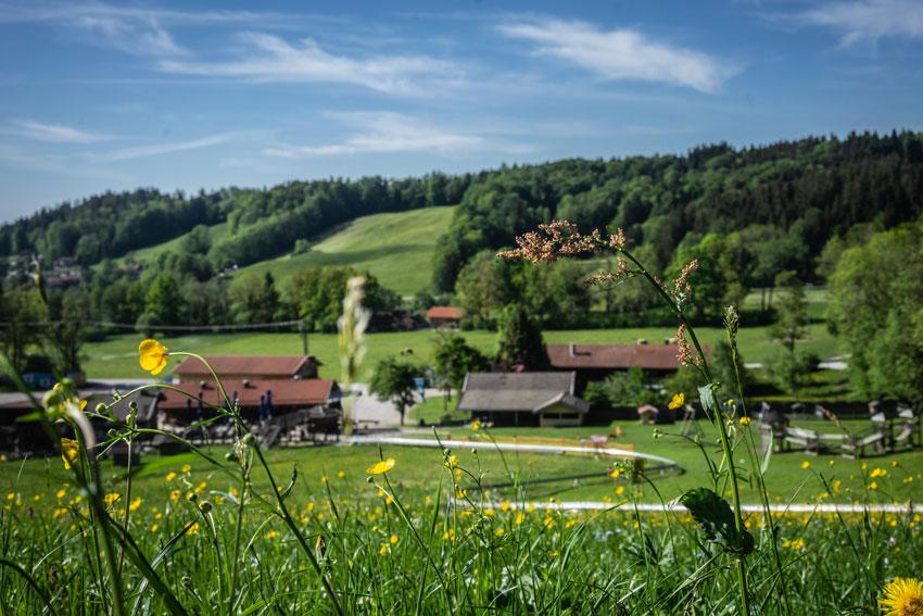 Außenpanorama des Familienbergparadies Ostin: Hochseilgarten, Einkehr, Somerrodelbahn und Kletterwald